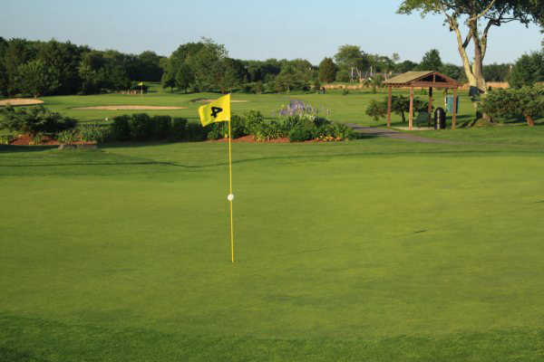 Hole 4 Flag with par 3 green in the rear.
